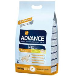 Affinity Advance Maxi Adult Pollo 14 kg